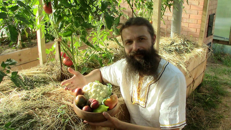 Как сажать фрукты и овощи 539