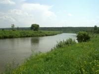 Река Угра летом