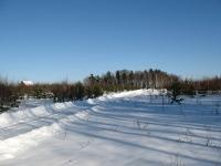 Первая зима в поселении