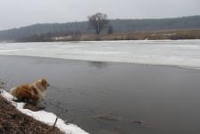 Лед скоро пойдет